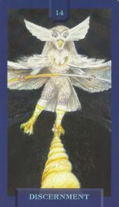 card 14